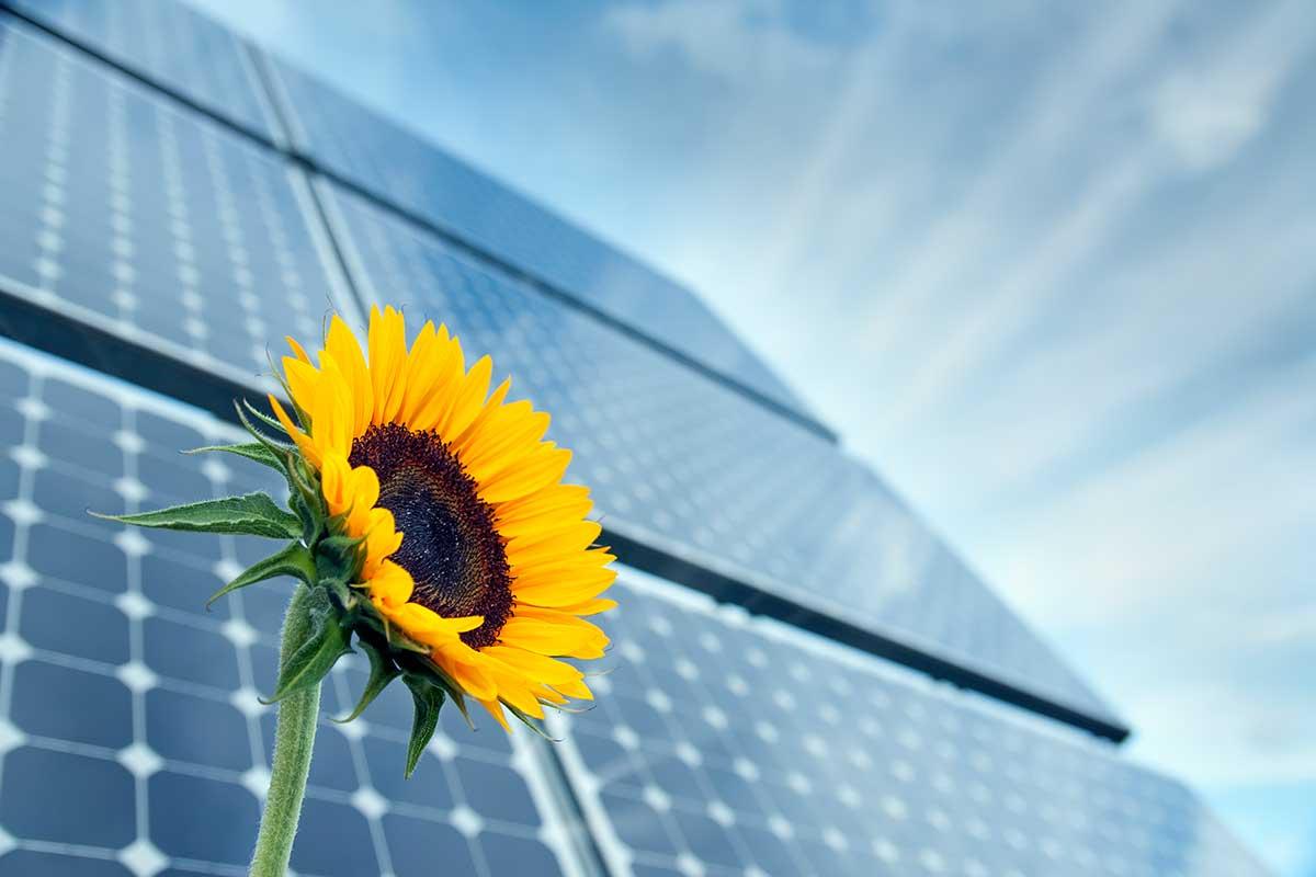 Fotovoltaico azienda agricola Brescia